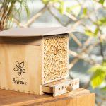 Beehome - Das Wildbienen-Häuschen