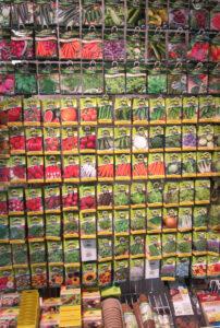 Frühling - die richtige Saat für den Garten